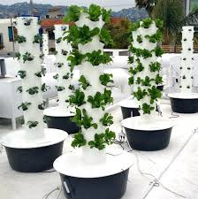 hydroponic herb garden kit another restaurant growing their own organic produce in their roof top tower hydroponic herb garden