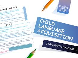 Child Language Acquisition Paragraph Flowcharts A Level English Language