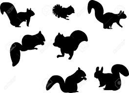 squirrel silhouette stock illustrations cliparts and