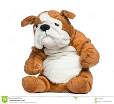 stuffed english bulldog toy stock photo  image