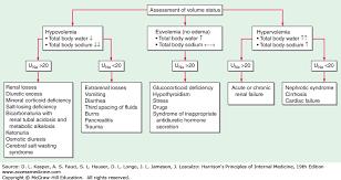 Fluid And Electrolyte Disturbances Harrisons Principles
