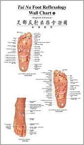 Tui Chart Buy Tui Na Foot Reflexology Wall Chart English Chinese