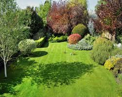 border lines planning a new garden don t bother with pen and paper get tramping round your plot