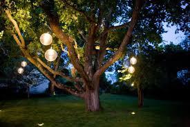 tree lighting ideas. Orb Lighting Ideas For Trees Tree A