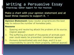writing workshop writing a persuasive essay assignment prewriting  11 make
