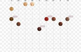 Wella Chart Color Chart Wella Hair Coloring Blond Png 665x535px Color