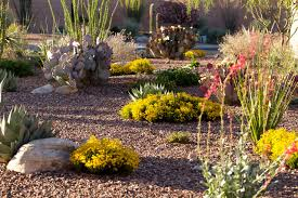 Small Picture Nice Desert Garden Design Garden Design 29