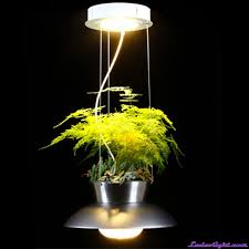 xsilence pendant light with grow light hanging plant light led flower pot grow light chrome lt9010 22w
