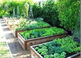 garden soil plastic raised garden beds raised bed garden soil best beds ideas on vegetable gardens garden garden soil on