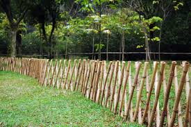bamboo garden stakes. Perfect Bamboo Bamboo Garden Stakes Canadian Tire For G