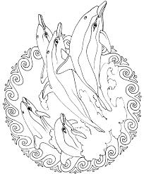 Mandala Dolfijnen Kleurplaat Jouwkleurplaten