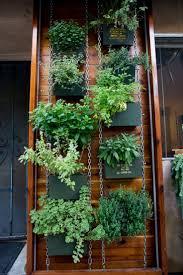 Vertical Herb Garden In Your Kitchen Vertical Herb Garden Sizemore