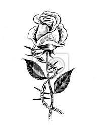 Plakát Růžová Květina A Ostnatý Drát Inkoust černé A Bílé Ilustrace