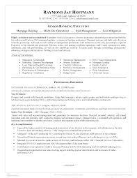 Banking Executive Resume Senior Banking Executive Resume How To Grab Your Futures Employers 10