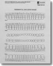 Periodontal Charting Online Free Dental Practice Education Research Unit Periodontal