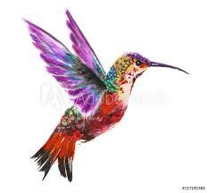 Fotobehang Geometrische Dieren Isolated Watercolor Hummingbird On