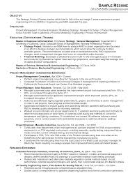 Resume Sample Chronological Resume