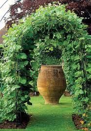 24 easy diy garden trellis ideas