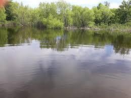 20 acres in Burnet County, Texas