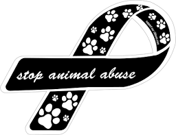 custom ribbon stop animal abuse