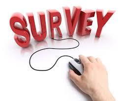 Survey Data Analysis Rayvat Bpo