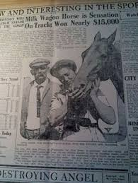 Image result for horse racing newspaper cartoon