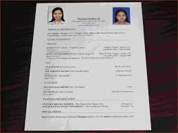 Beautiful Prepare Resume Online For Freshers Pictures Inspiration