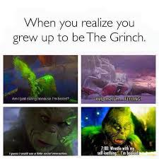 the grinch memes. Beautiful Grinch When You Realise Your The Grinch And The Memes Pinterest