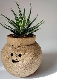 Hairy Babes   Funny Ceramics Plant Pots