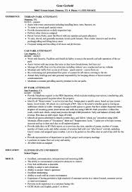 Valet Attendant Resume A Good Resume Example
