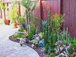 Small Picture 101 best Succulent and Cactus Garden Ideas images on Pinterest