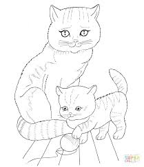 Pete The Cat Coloring Page The Cat Coloring Sheet Page Pages