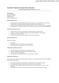 Resume Format Computer Operator It Resume Cover Letter Sample