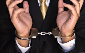 Уголовная ответственность за преднамеренное банкротство курсовая
