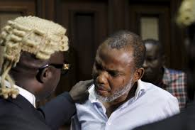 Image result for images for nnamdi kanu