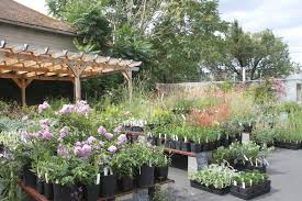 xera plants no neo nic pledge our interview greg shepherd the nursery is surprisingly quiet about their no neo nic pledge we did not any signage at the retail outlet though other retailers in portland such