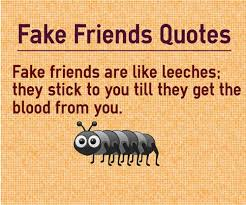 40 Fake Friend Status For Whatsapp Famous Fake Friends Quotes Interesting Fake Friend Quotes In Malayalam