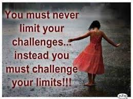 Quotes About Challenges Magnificent Swinespi Funny Pictures Challenge Quotes Challenge Yourself Quotes