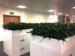 office planter. Office Planter. Filingcabinetplanter Planter A