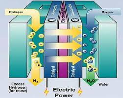 consider the following hydrogen fuel cell