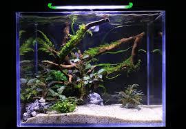 Light Requirement For Planted Aquarium Up Aqua Pro Led Light 3c Series Planted Aquarium Nano