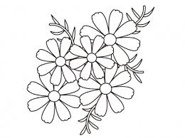 無料ダウンロード コスモス 塗り絵 無料の印刷用ぬりえページ