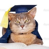 Заказать магистерскую диссертацию магистерская диссертация на заказ kris