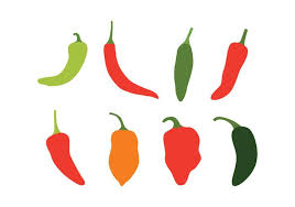 chili peppers vector. Modren Chili Chili Peppers Vector Set And