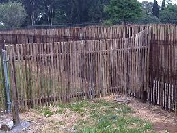 electric fence for garden. Garden Fencing, Fencing Electric Fence For