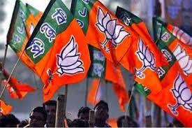 ஜம்மு-காஷ்மீர் உள்ளாட்சி தேர்தல்: பாஜக வெற்றி
