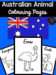 Small Picture Australian Quokka Animal Colouring Pages Pinterest Quokka