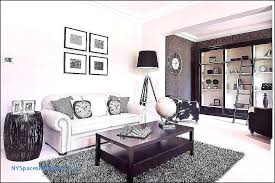 small living room rugs ideas area