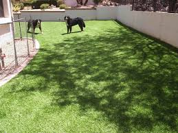 artificial turf backyard. Large Backyard Artificial Turf N