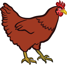 chicken clipart. Fine Chicken Vector Royalty Free Library Hen At Getdrawings Com For Personal Use On Chicken Clipart A